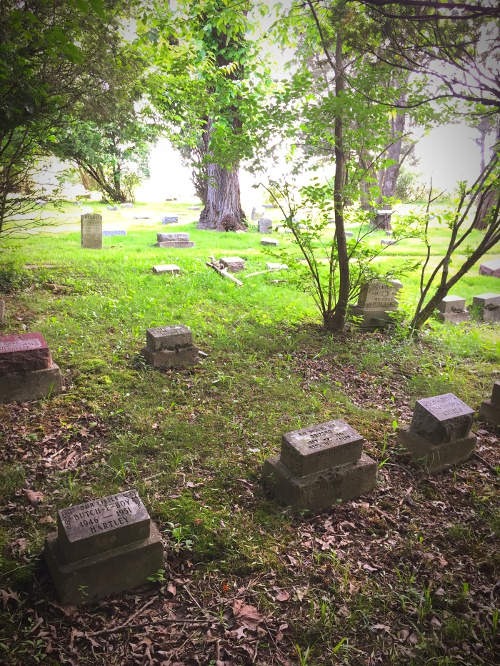 Dogs in Heaven: Pet Cemeteries, History andCulture