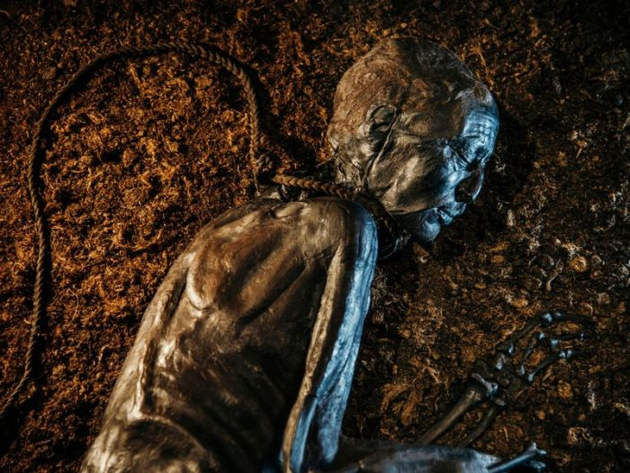 Ritual Sacrifice: Bog Bodies andBeyond